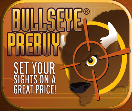 Bullseye Program Brochure
